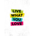 live what you love inspiring creative motivation vector image vector image