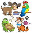 pet collection vector image vector image