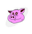 pig face vector image vector image