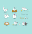 set with cartoon cute chicken nest and eggs farm vector image