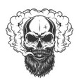 skull in the smoke vector image vector image