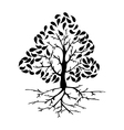 Tree icon silhouette vector image vector image