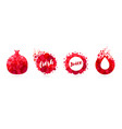 abstract pomegranate juice logo set design vector image