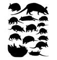 armadillos animal silhouettes vector image