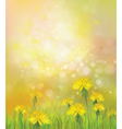 dandelions spring background vector image vector image
