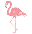 flamingo bird icon vector image