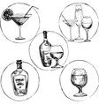 set of alcohol drinks vector image vector image