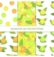 Set of seamless citrus pattern Lemon pattern vector image vector image