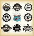 vintage styled label design vector image