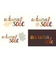Set of Autumn sale inscription vector image