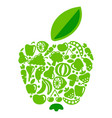 apple from fruit and vegetables vector image vector image
