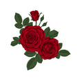 beautiful bouquet with red roses and leaves vector image vector image