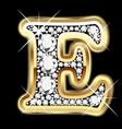 e gold and diamond vector image