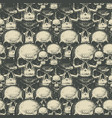 seamless background with hand drawn human skulls vector image vector image
