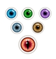 Set of colorful eye balls vector image vector image