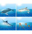 Shark and other sea animals in the sea vector image