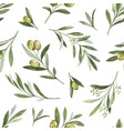 watercolor seamless pattern olive vector image vector image