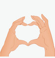 two hands making heart sign valentine concept vector image