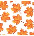background autumn maple leaves vector image vector image