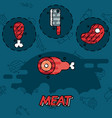 meat flat concept icons vector image