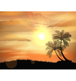 Sunset background with palm tree vector image vector image