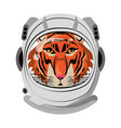 tiger with astronaut helmet cartoon isolated vector image vector image