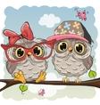 Two cute Cartoon Owls vector image vector image