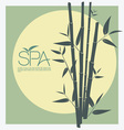 Bamboo for Spa vector image vector image