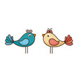 birds lovely valentine vector image