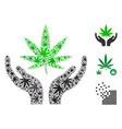 cannabis care hands composition of hemp leaves vector image vector image