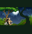 chimpanzee mother with her bain night fores vector image vector image