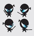 Eyeball Ninjas vector image