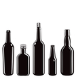 glass bottles vector image vector image