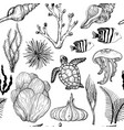 seamless pattern with marine hand drawn corals and vector image vector image