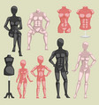 shop beauty mannequin dummy doll model for vector image vector image