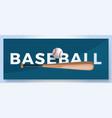 typography word baseball logo sport logotype vector image