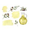 watercolor set glass bottle olive oil vector image
