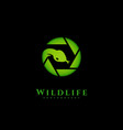 wildlife photography logo vector image vector image