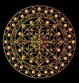 Black mandala vector image vector image