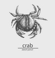 crab a marine resident sketch style vector image