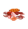 meat products composition vector image vector image