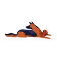 playful cartoon german shepherd dog breed colored vector image vector image