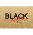 Black Friday Sale background Promotional banner vector image vector image