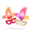 Pair of bright carnival masks with colorful vector image