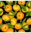 Seamless pattern with mandarins Tropical fruits vector image vector image