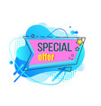special offer discounts from shop promotional vector image