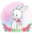 watercolor white babunny with pink bow vector image