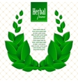 Herbal eco wreath of natural green leaves vector image vector image
