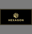 hn hexagon logo design inspiration vector image vector image