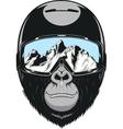 Monkey wearing a helmet vector image vector image